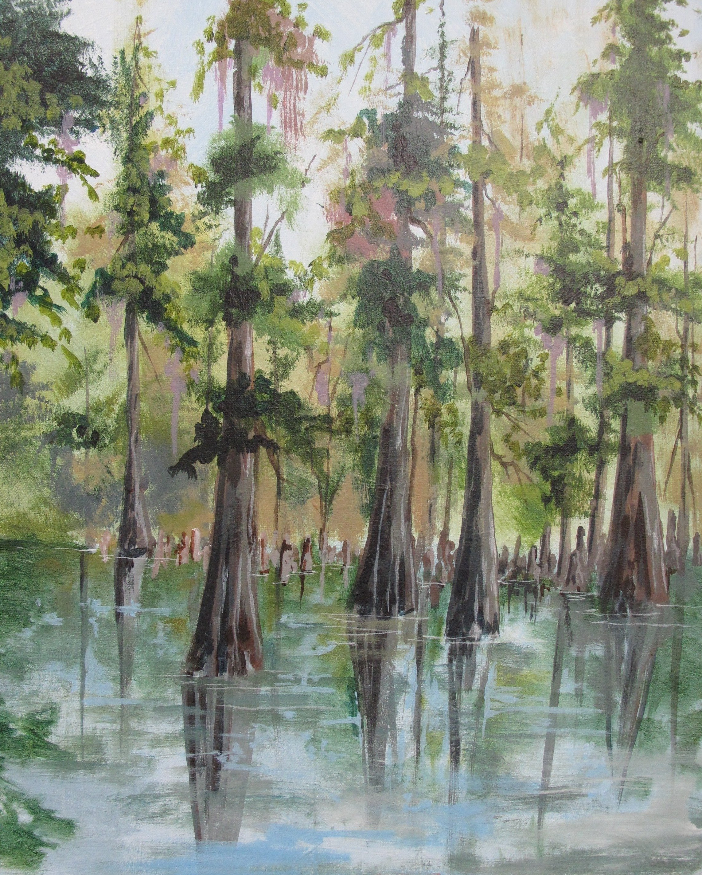 swamps-of-florida